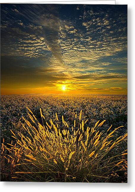 Geographic Greeting Cards - Rural Choir Greeting Card by Phil Koch