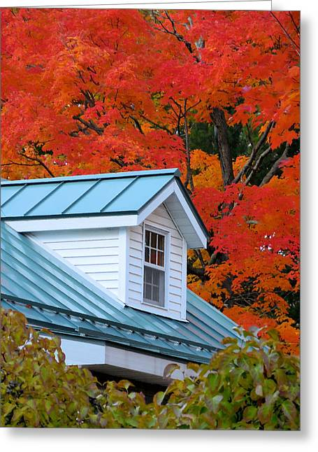 Rural Colorful Autumn Landscape 2 Greeting Card by Lanjee Chee