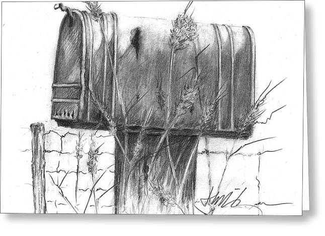 Rural Country Mailbox Greeting Card