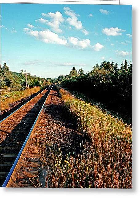 Rural Country Side Train Tracks Greeting Card