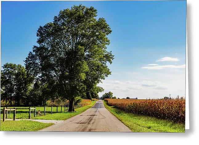 Rural Indiana Greeting Card
