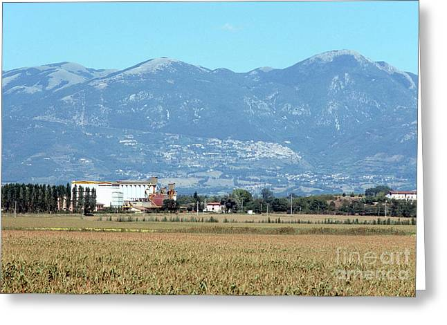 Rural Landscape With Silos Greeting Card by Fabrizio Ruggeri