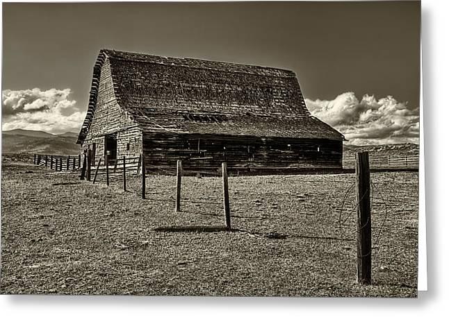 Rural Montana Barn In Sepia Greeting Card by Mark Kiver