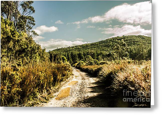 Rural Paths Out Yonder Greeting Card by Jorgo Photography - Wall Art Gallery