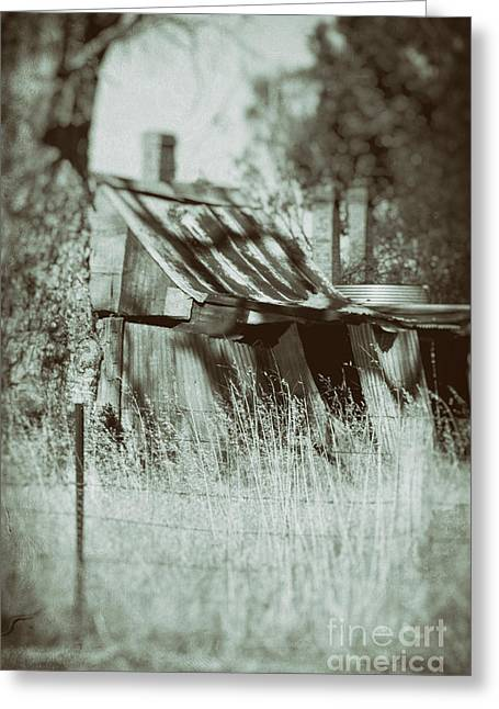 Greeting Card featuring the photograph Rural Reminiscence by Linda Lees