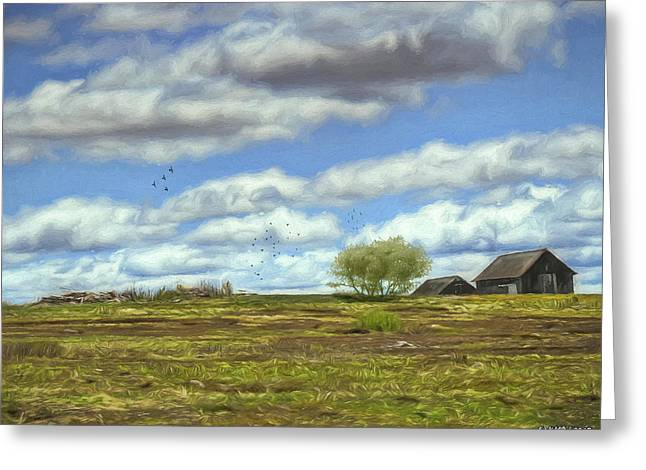 Rural Scene In Northern Maine Greeting Card