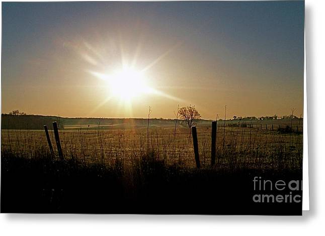 Rural Sunrise Greeting Card by Sue Stefanowicz