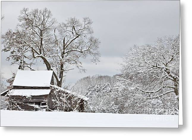 Rural Winter Barn Greeting Card by Benanne Stiens