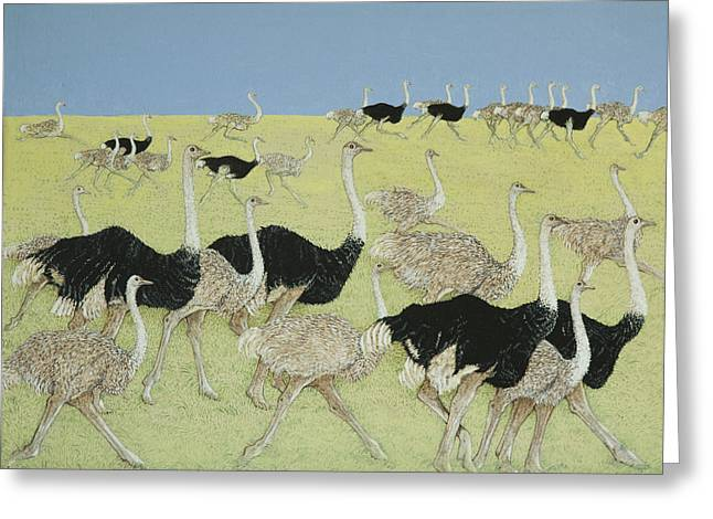 Rush Hour Greeting Card by Pat Scott