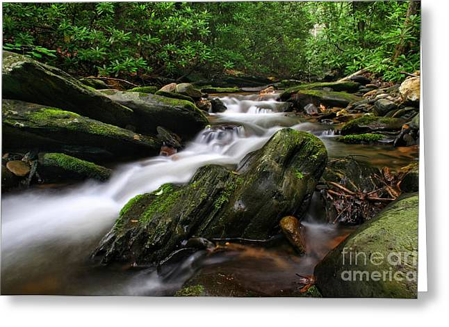 Rushing By Greeting Card by Darren Fisher