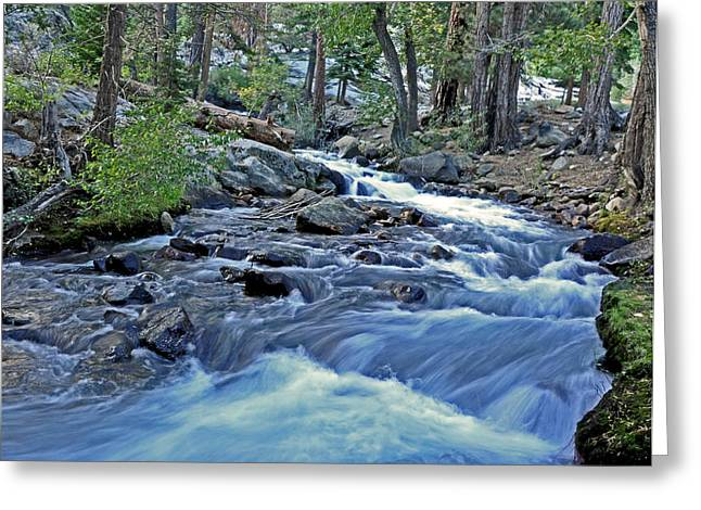 Rushing Riverbend Greeting Card