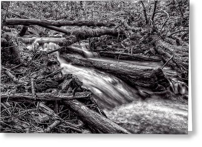 Rushing Stream - Bw Greeting Card by Christopher Holmes