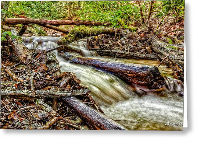Rushing Stream Greeting Card by Christopher Holmes