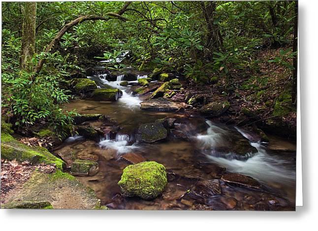 Rushing Stream Through Appalachian Greeting Card