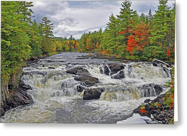 Greeting Card featuring the photograph Rushing Towards Fall by Glenn Gordon
