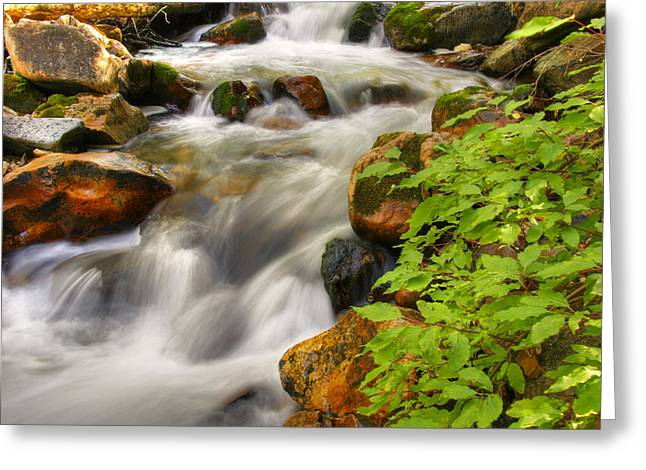 Rushing Water 3 Greeting Card by Douglas Pulsipher