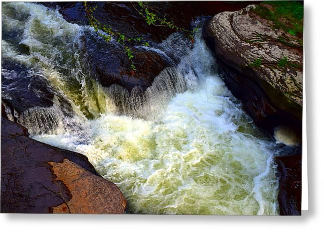 Rushing Waters Greeting Card by Billie Steer