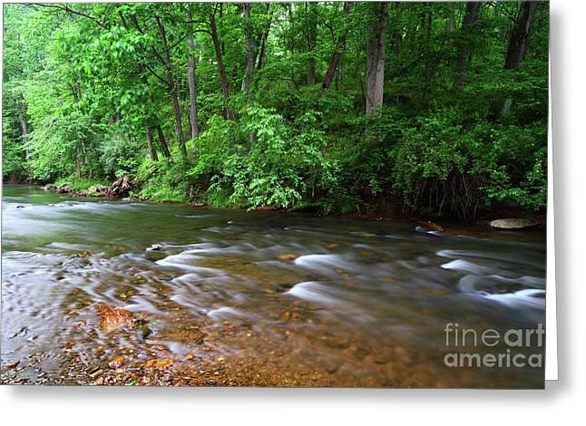 Rushing Waters Of The Patapsco River Maryland Greeting Card