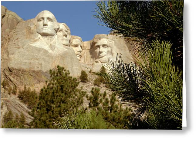 Rushmore Pine Needles Greeting Card by Mike Oistad