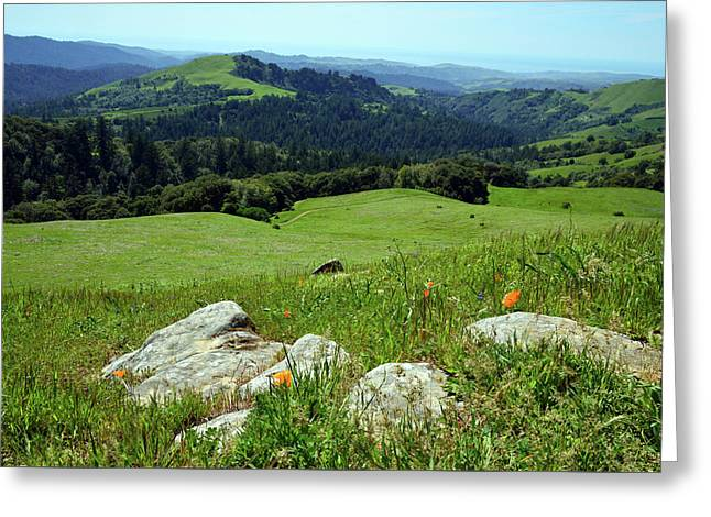 Russian Ridge View Greeting Card by Kathy Yates