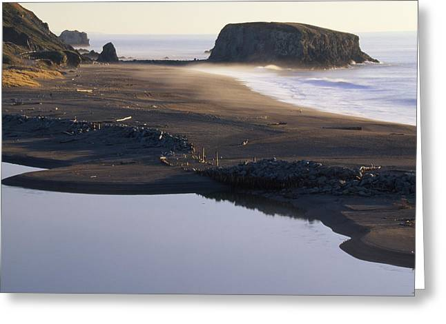 Russian River And Goat Rock Greeting Card