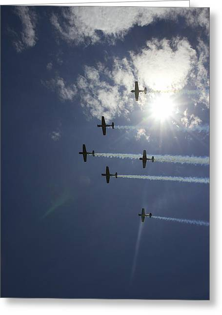 Greeting Card featuring the photograph Russian Roolettes And Sydney Sun by Miroslava Jurcik