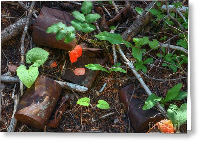 Greeting Card featuring the photograph Rusted Beauty by Sharon Seaward