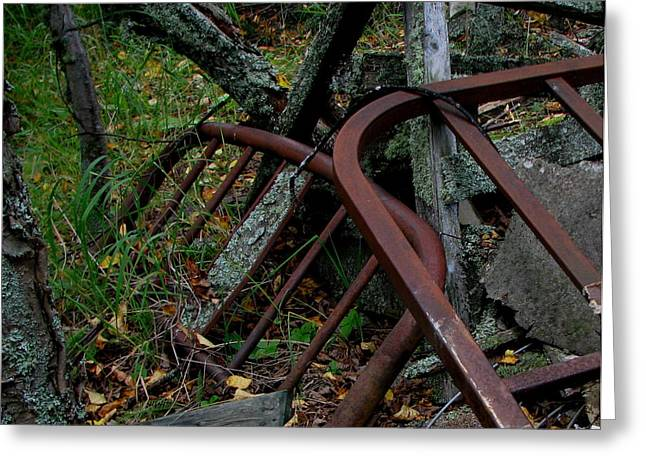 Rusted Bed Frame At Jackfish Ontario Greeting Card by Laura Wergin Comeau