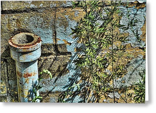 Rusted Pipe With Leaves Greeting Card by Mike McCool