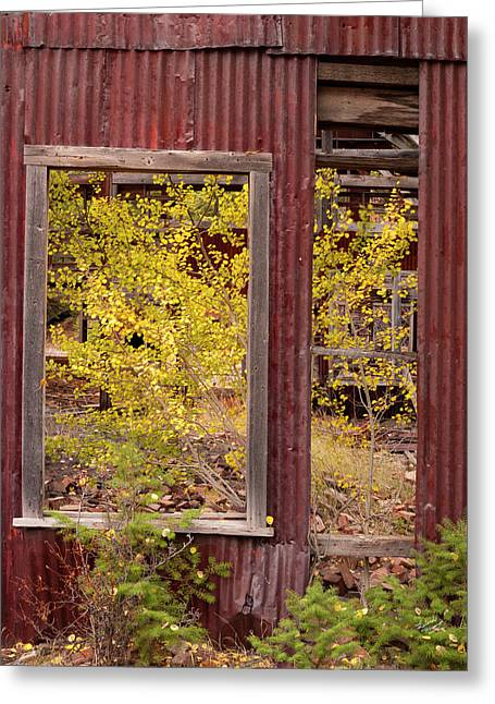 Greeting Card featuring the photograph Rustic Autumn by Leland D Howard