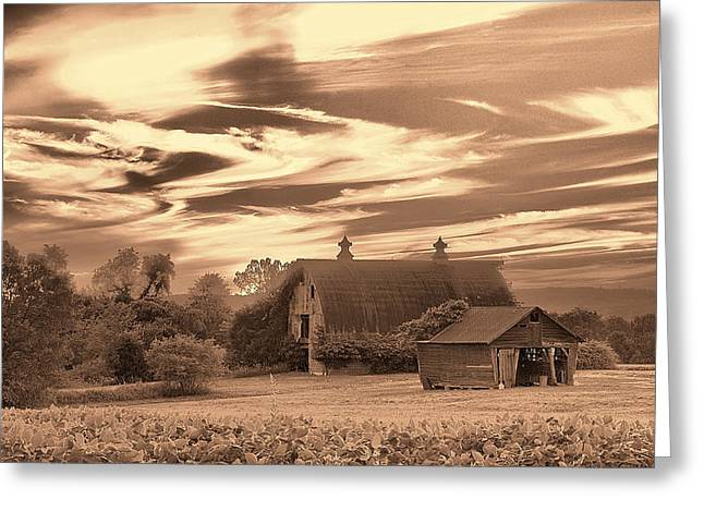 Rustic Barn 2 Greeting Card by Mark Fuller