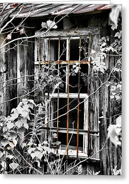 Rustic Barn Window Greeting Card by Greg Sharpe