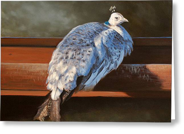 Rustic Elegance - White Peahen Greeting Card