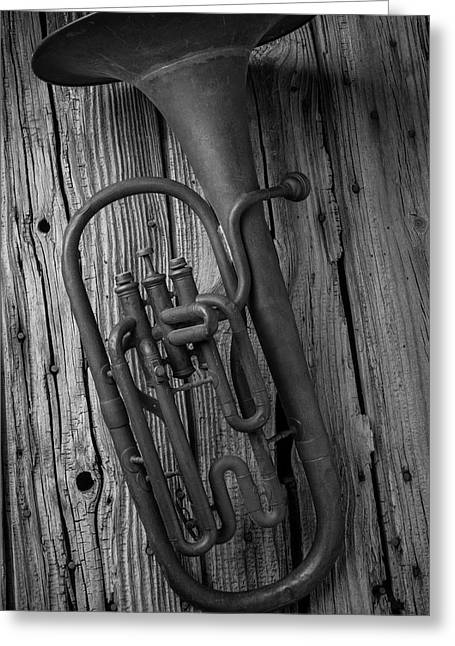 Rustic Old Horn Greeting Card by Garry Gay