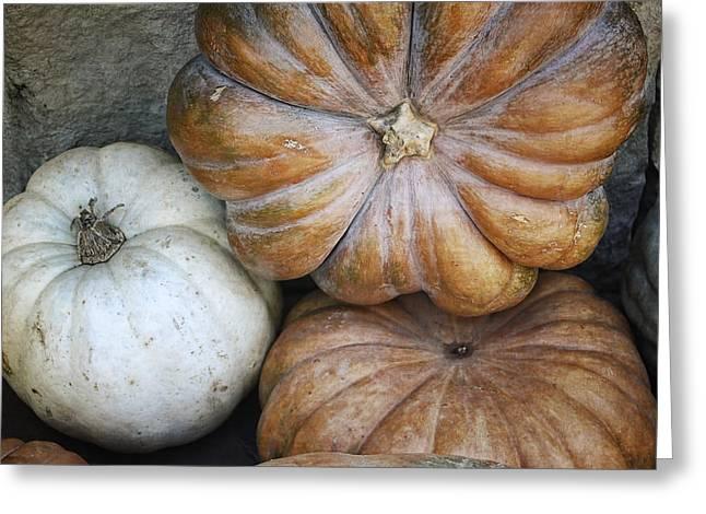 Rustic Pumpkins Greeting Card by Joan Carroll