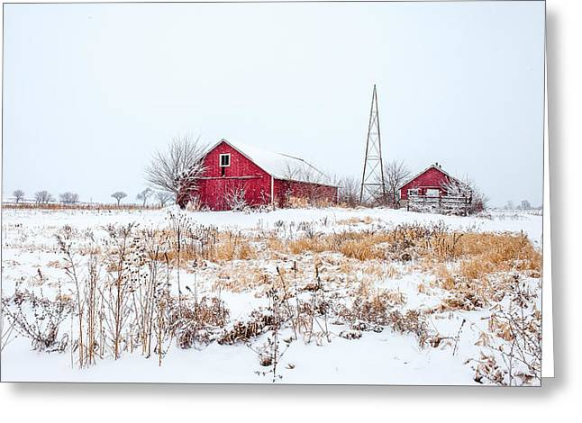 Rustic Reds Greeting Card by Todd Klassy