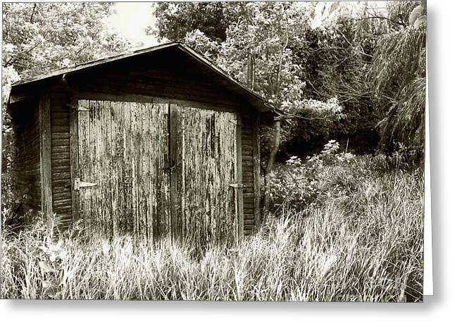 Rustic Shed Greeting Card by Perry Webster
