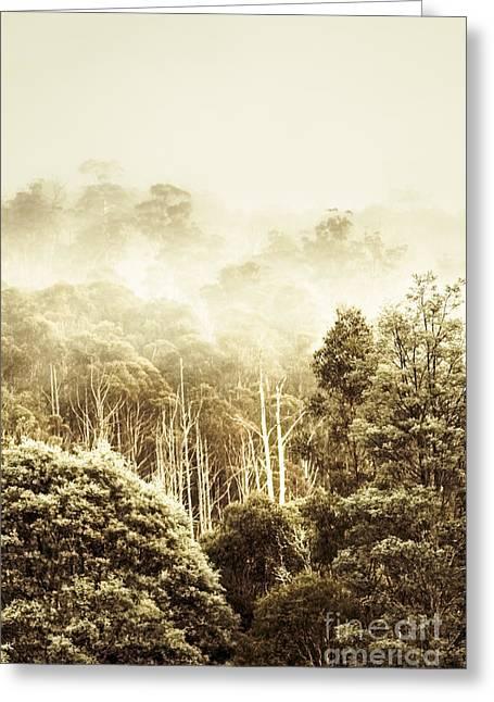 Rustic Tasmanian Rural Forest Greeting Card
