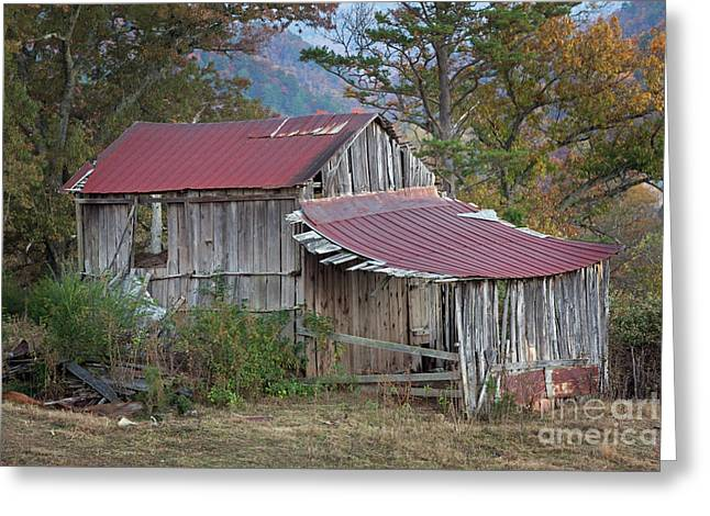 Rustic Weathered Hillside Barn Greeting Card by John Stephens