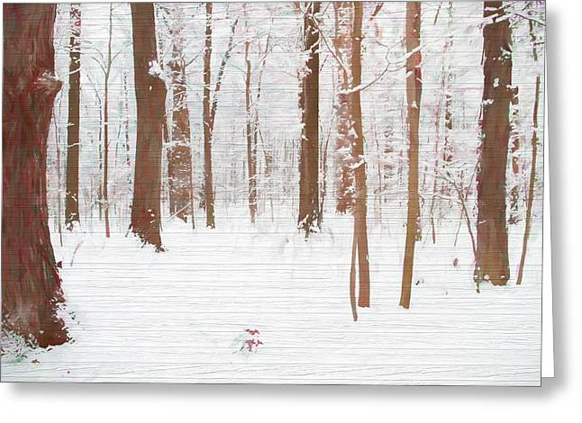 Rustic Winter Forest Greeting Card by Dan Sproul
