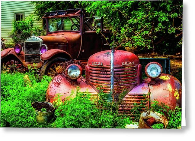 Rusting In The Garden Greeting Card