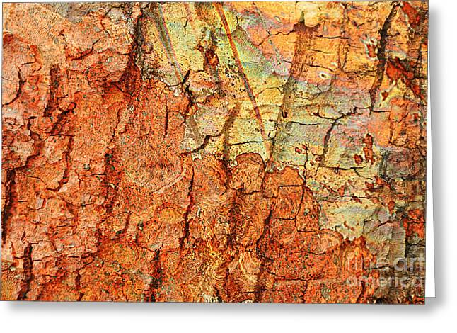Rusty Bark Abstract Greeting Card by Carol Groenen
