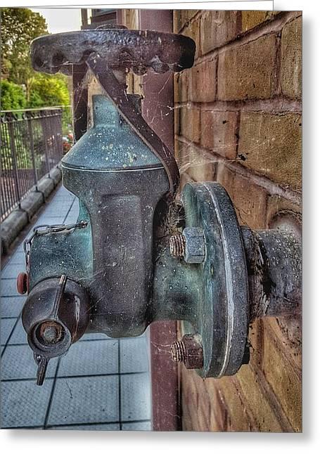 Rusty Cobweb Clad Water Pump Greeting Card by Zahra Majid