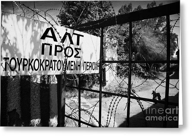 rusty fence and razor wire in UN buffer zone in the green line dividing north south cyprus Greeting Card by Joe Fox