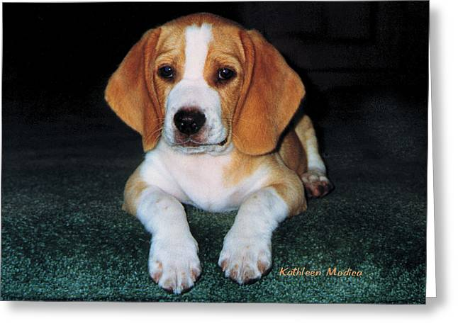 Greeting Card featuring the photograph Rusty Puppy by KLM Kathel
