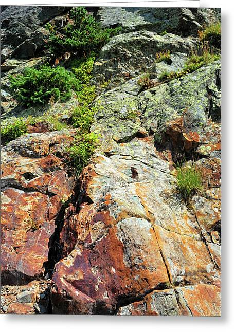 Rusty Rock Face Greeting Card