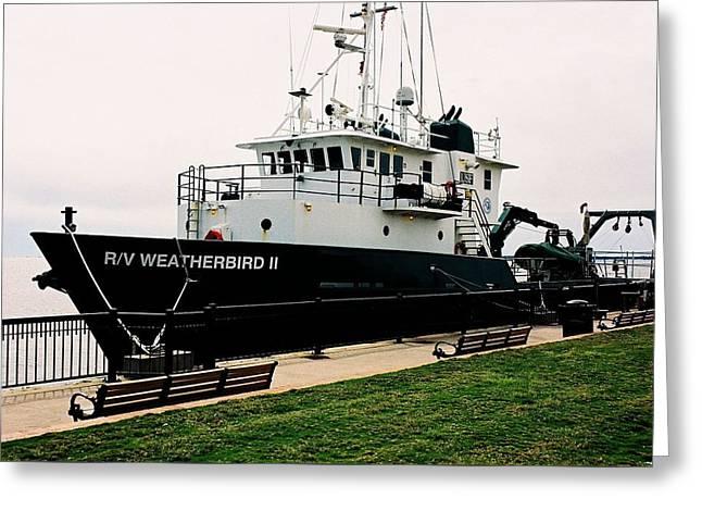 Rv Weatherbird 11 Greeting Card