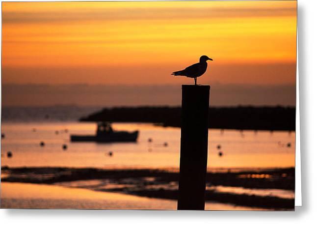 Rye Harbor Sunrise Greeting Card
