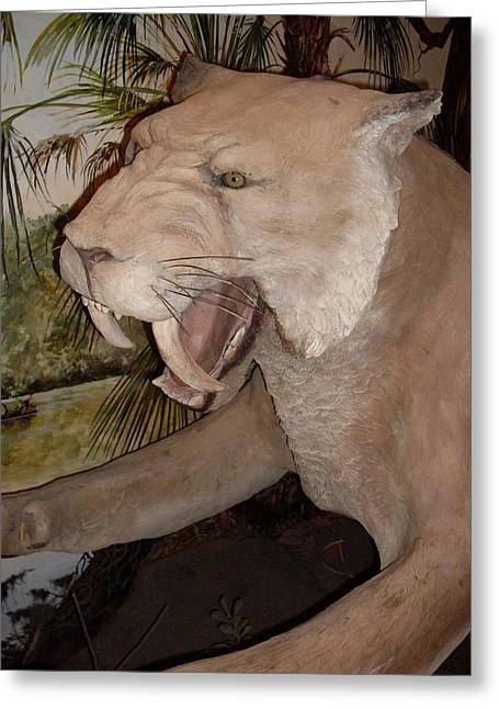 Saber Tooth Tiger Greeting Card by Warren Thompson