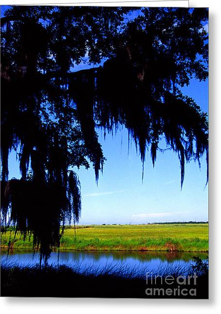 Sabine National Wildlife Refuge Along The Creole Nature Trail Greeting Card by Thomas R Fletcher